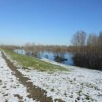 casse espansione fiume Enza 2012