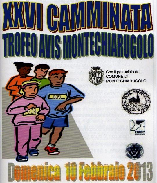 locandina Avis Montechiarugolo