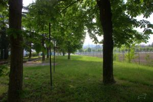 San polo parco