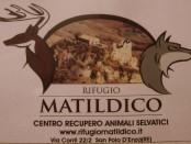 Lieta storia rifugio Matildico San Polo d'Enza