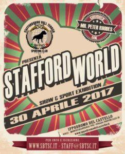 The Stafford World Bull Terrier Montechiarugolo 2017