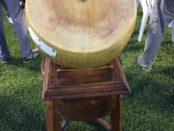Barco Bibbiano gara formaggio Parmigiano Reggiano