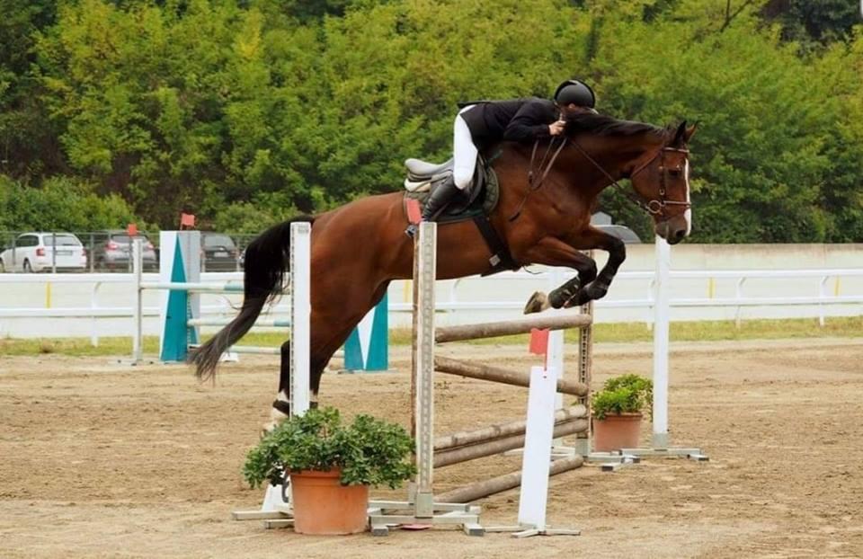 Jumping in Montechiarugolo....31 marzo 2019
