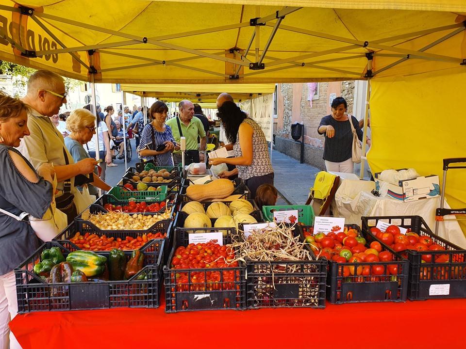4°mostra mercato pomodoro riccio di Parma 2019