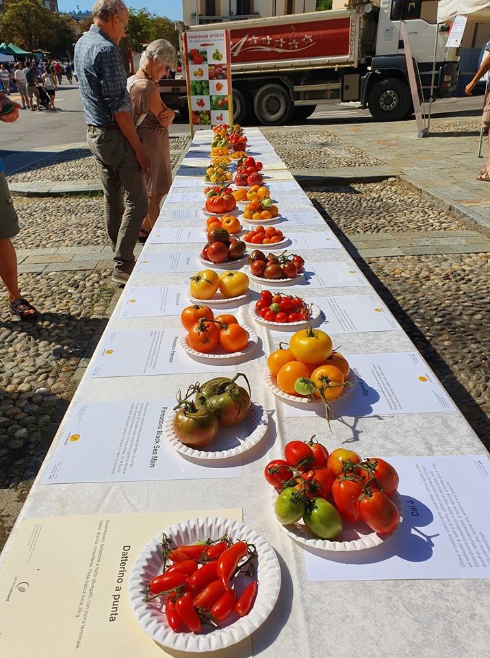 4°mostra mercato pomodoro riccio di Parma 20194°mostra mercato pomodoro riccio di Parma 2019