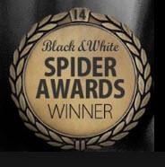 4TH ANNUAL BLACK AND WHITE SPIDER AWARDS HONORS PHOTOGRAPHER CESARE DI LIBORIO
