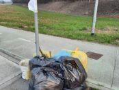La spazzatura e la plastica punto di non ritorno o giro di boa?